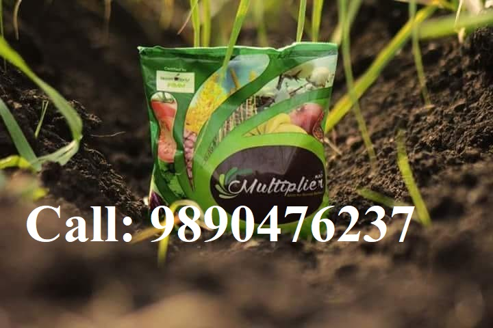 organic fertilizer,buy organic fertilizer,organic fertilizer